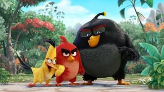 Angry Birds : Un très gros budget pour le film