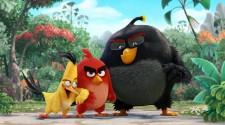 Angry Birds : Premier trailer pour le film