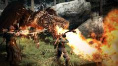 Dragon's Dogma Dark Arisen : Une adaptation sur Switch