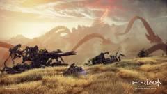 Horizon Forbidden West : Quelques petites précisions